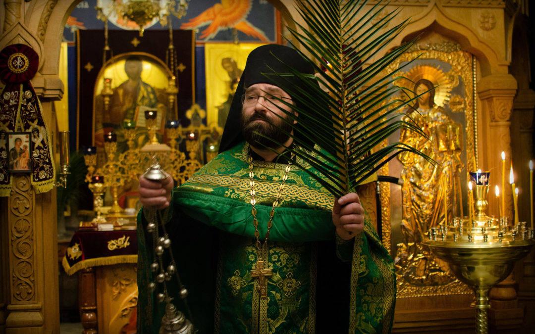 Слово настоятеля в день Входа Господня в Иерусалим